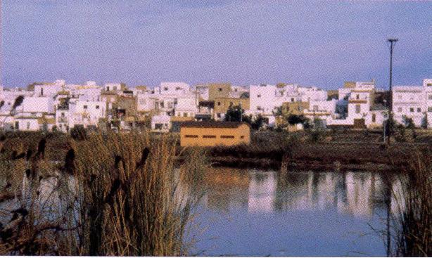 Vista de la Laguna de Fuente del Rey. Fuente: Imagen cedida por Manuel Hernández.